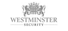 seo for security niche in the UK